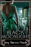 Black Moonlight (The Marjorie McClelland Mysteries Book 4)