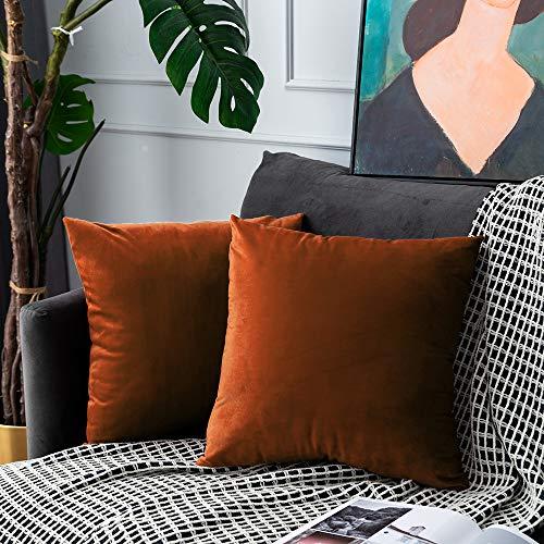 UPOPO Cojines Sofa Terciopelo Funda Decorativos Cojin Salon Cama para Super Suave Fundas Dormitorio Habitacion 2 Piezas de Color Sólido De Cojín Suave De Estar Cremalleras 60 X 60 cm Rojo Ladrillo
