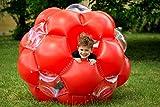 Bola Gigante Hinchable marca LEXIBOOK