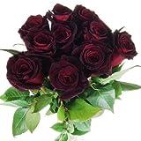 10 schwarze Rosen - langstielig und vasenfertig -