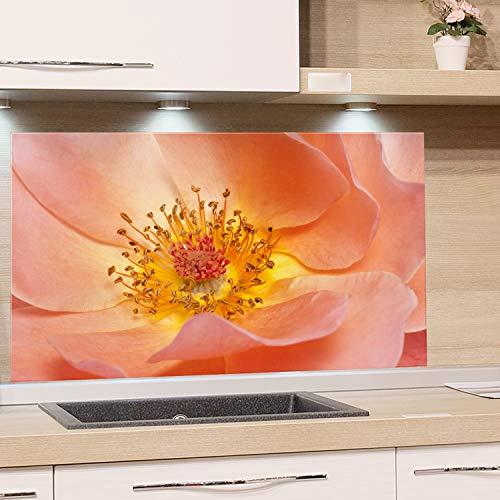 GRAZDesign Spritzschutz Glas für Küche Herd, Bild-Motiv Blüte Orange Zart, Küchenrückwand Küchenspiegel Glasrückwand / 80x50cm
