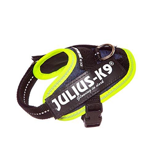 Julius-K9 IDC powerservies, Baby 1, Jeans mit neon Randverzierung