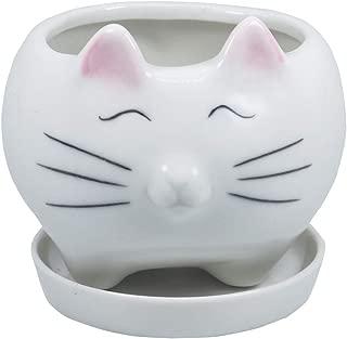 Gemseek Cute Cat Succulent Planter Pot, White Ceramic Cactus/Flower Container, Desktop Bonsai Holder with Drainage Tray for Indoor Home Decor
