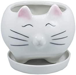 Explore Cat Planters For Plants