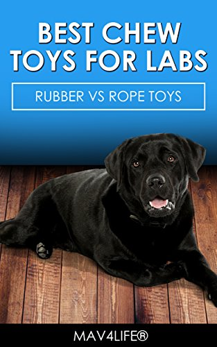 Best Chew Toys for Labs : Rubber vs Rope Toys (Labs, Dog Toys, Chew Toys, Puppies, Labradors)