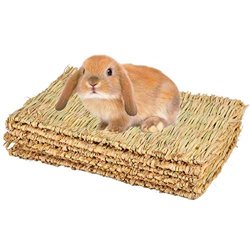 Alfombrilla de hierba para conejo, conejo, juguete para masticar, tapete de cama para cobaya, chinchilla, ardilla, hámster, gato, perro y animal pequeño, 4 unidades (4 piezas)