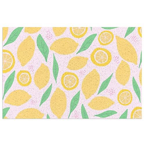 Felpudo de entrada con limonada, color rosa, de PVC, antideslizante, impermeable, para interiores y exteriores, alfombra de entrada, decoración de porche de 39,7 x 59,9 cm