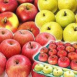 りんご 10kg箱 ふじとミックス 訳あり 青森 10キロ箱 林檎
