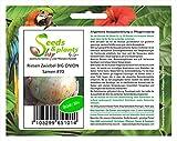 20x Riesen Zwiebel BIG ONION Samen Gemüsesamen Pflanze Gemüse #70