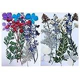 ZMYY 25 Stück gepresste Blumen natürlich gemischt getrocknete bunte Blumen Blätter für Harz...