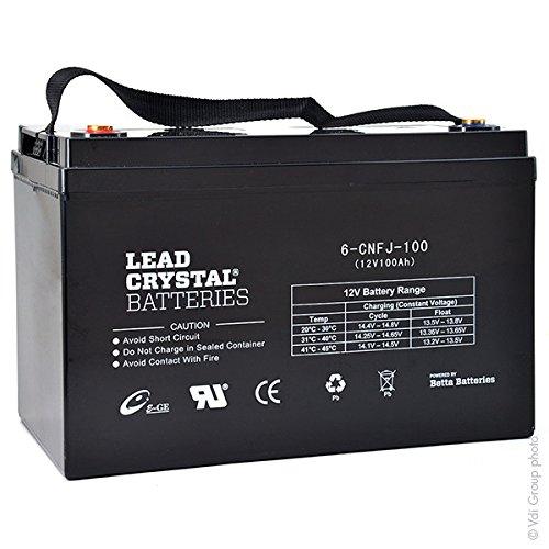 Lead Crystal - Akku Bleikristall 6-CNFJ-100 12V 100Ah M6-F