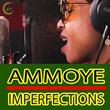 Imperfections (Reggae Remix) [feat. Ammoye]