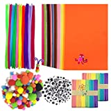Wartoon Pipe Cleaners Crafts Set, Pipe Cheners Tallo de Pompones y Pompones con Ojos saltones para...