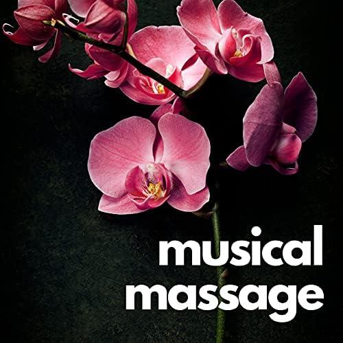 Spa Music Relaxation, Spa, Wellness & Sleep Songs 101