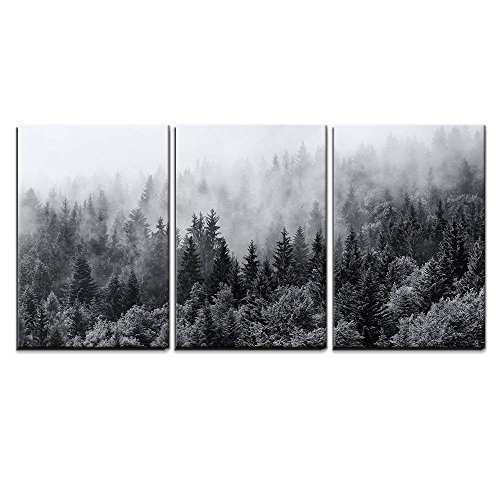 wall26 - 3 Piece Canvas Wall Art - Misty Forests of Evergreen Coniferous Trees in an Ethereal Landscape - Modern Home Art Stretched and Framed Ready to Hang - 24'x36'x3 Panels