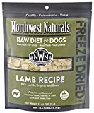 Northwest Naturals Freeze Dried Raw Diet for Dogs Freeze Dried Nuggets Dog Food – Grain-Free, Gluten-Free Pet Food, Dog Training Treats (Lamb, 12 Oz.)