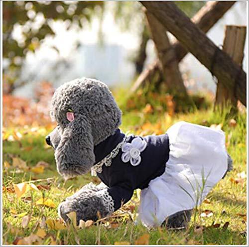 YAMEIJIA Hond Jumpsuit Hond Kleding Kant/Prinses Blauw Katoen Kostuum Voor Huisdieren Zomer Jurken & Rokken/Kant