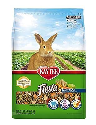 Kaytee Fiesta Rabbit Food, 6.5 lb from Central Garden & Pet