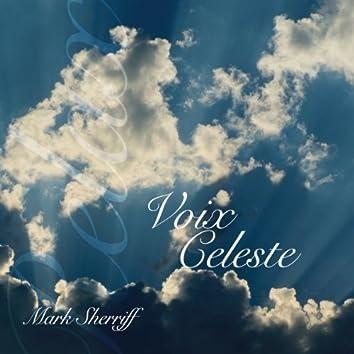 Voix Celeste, Vol. 1