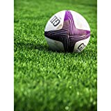 Sport Rugby Ball Field World Cup Photo Large XL Wall Art Canvas Print Ballon Champ Monde Photographier Mur