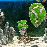 Shuohu Stimulation Floating Moss Rock Resin Stone | Fish Tank Decorated Rock Aquarium Landscape Decoration S