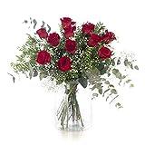 12 Rosas Rojas, Flores Naturales a Domicilio Blossom | Ramo de Rosas Naturales a Domicilio Frescas y Recién Cortadas | Sant Jordi, San Valentín, Día de los Difuntos | Entrega Gratis 24 horas