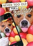 Tarjeta de felicitación de cumpleaños con texto en inglés'Yours Truly Birthday Card Never Too Old Selfie!' Perro