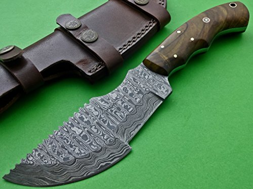Poshland Knives TRH-001, Custom Handmade Damascus Steel Tracker Knife - Exotic Wood Handle