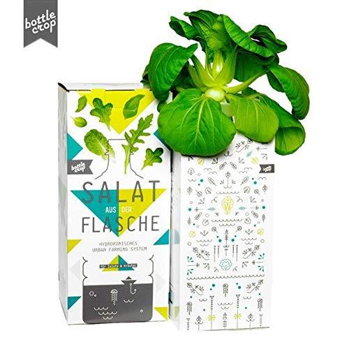Bottlecrop - Salat aus der Flasche | Mini Pak Choi | Einzugsgeschenk | Anzuchtsystem | Urban Farming | Hydrokultur | Pflanzen ohne Erde | Kräuter Fensterbank | vertikaler Garten | nachhaltig