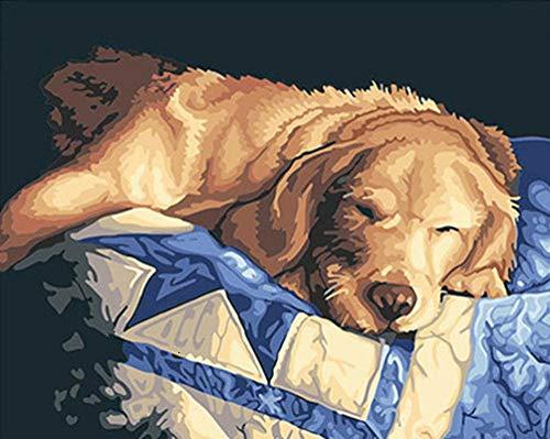 KSKD Peinture à l'huile bricolage par kits numéros Peinture à l'huile toile avec adultes dessin débutant avec des pinceaux Chien animal endormi- 16x20 pouces sans cadre