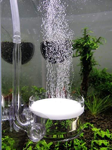 ディフューザー CO2拡散器・ビートル風 ガラス製 (直径4センチ - 90?120cmサイズの水槽用)