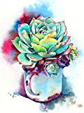 Bimkole 5d Diamond Painting Kit Bricolaje Arte Planta, Cuadro Abstracto Flor En Maceta...