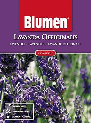 Blumen Semi di LAVANDA OFFICINALIS