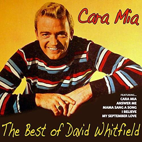 David Whitfield