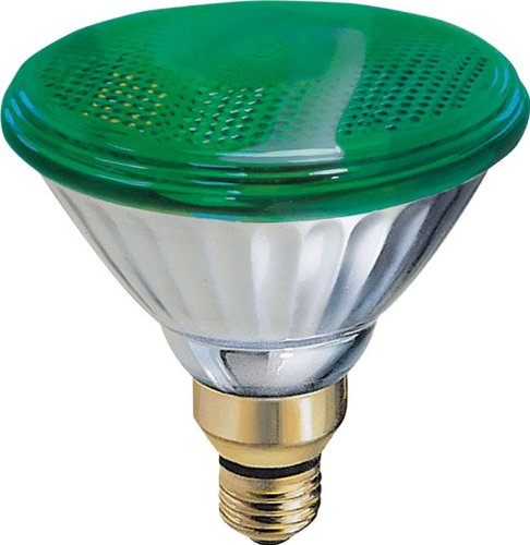 GE Lighting 13474 85-Watt Outdoor PAR38 Incandescent Light Bulb, Green
