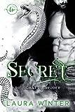 Secret: Die Schattenbrüder (Mafia 7)