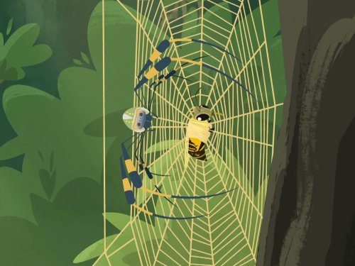 Secrets of the Spider's Web
