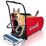 Gravitis Pet Supplies Tapis roulant électrique double usage pour chiens et humains Machine de course motorisée pour dressage de chien