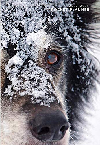 Pocket Planner 2020-2021: SNOW DOG! Extra Spacious 2 Year Pocket Planner Calendar | U.S Federal Holidays Marked in ~ Note Pages ~ Password Pages ~ Phone Book Pages (Monday Start, Purse Friendly)