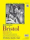 Pro-Art-Bilderpalette Strathmore Bristol Papier vélin de 35,5cm x 43cm, 20Feuilles