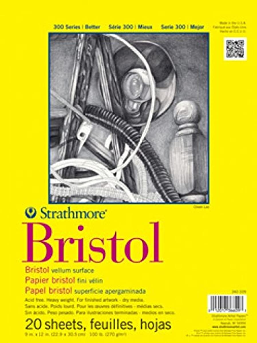 Strathmore (342-119) STR-342-119 20 Sheet Regular Bristol Pad, 19 by 24