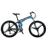 EUROBIKE Moumtain Bike G6 21 Speed 26 Inch Bicycle 3-Spoke Wheels Dual Disc Brake Folding...