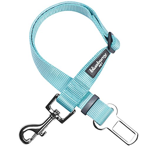 Blueberry Pet Essentials 19 Colors Classic Dog Seat Belt Tether for Dogs Cats, Mint Blue, Durable Safety Car Vehicle Seatbelts Leads Use with Harness