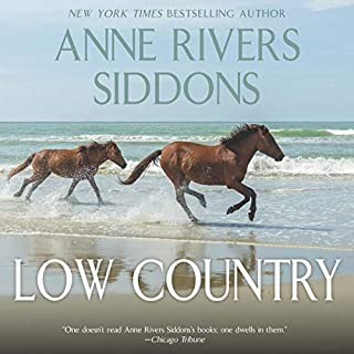 Low Country audiobook cover art