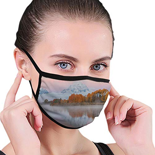 Dustproof Windproof Face Mask,Washable Cloth,Face Cover,Cover for Dust Unisex Adults Mountains Scenery Misty Nature View Forest Lake Reflection
