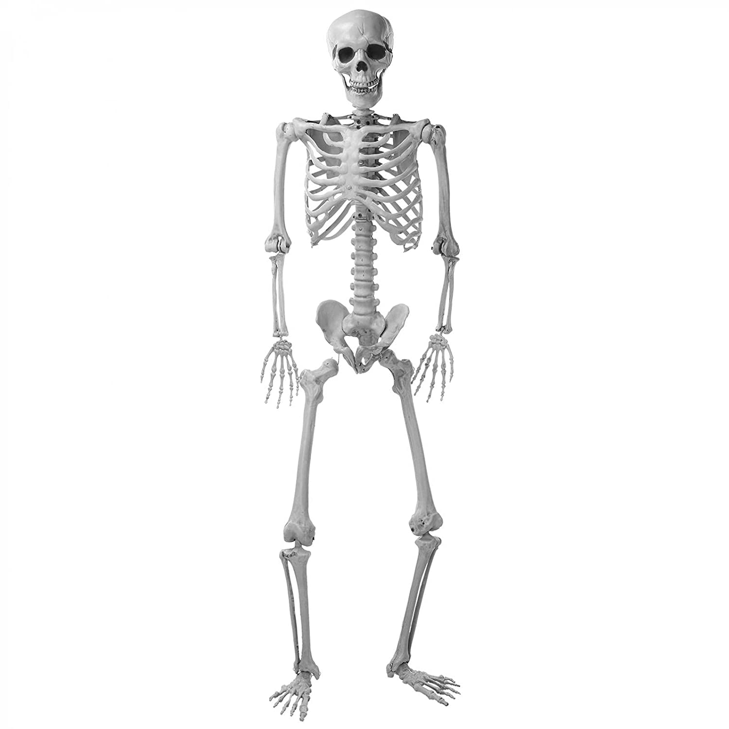Jomstar 65Inch Max 88% OFF Full Size D Skeleton Halloween Direct stock discount
