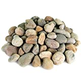 Mexican Beach Pebbles | 20 Pounds of Smooth Unpolished Stones | Hand-Picked, Premium Pebbles for Garden and Landscape Design | Buff, 1 Inch - 2 Inch