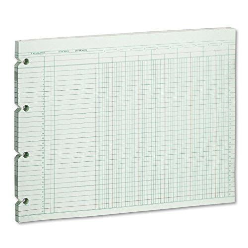Wilson Jones G1010 Accounting Sheets, 10 Column, 9-1/4 x 11-7/8, 100 Loose Sheets/Pack, Green