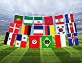 Demarkt Flaggenkette Fahnenkette Wimpelkette Russland World Cup Football Bunting nationalen Fahnen Flaggenkette Länderflaggen international 32 Länder Fahnen ca. 10,5m