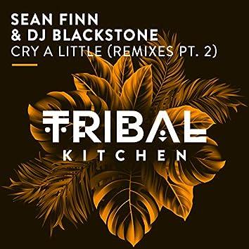 Cry a Little (Remixes Pt. 2)